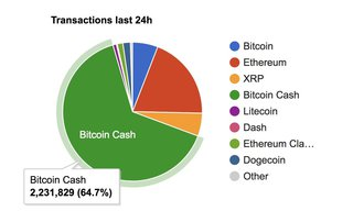 "In the last 24 hours Bitcoin Cash had more transactions than all other cryptocurrencies combined. <br><br> Tweeted by <a href=""https://twitter.com/rogerkver/status/1036633722685218818"" target""_blank"">Roger Ver</a> on 3 Sep 2018 ‏"