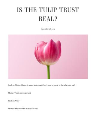 "<p><a href=""https://personacryptona.com/essays/is-the-tulip-trust-real"" target=""_blank"">Read on</a></p> <p>Source:&nbsp;<a href=""https://personacryptona.com/essays/is-the-tulip-trust-real"" target=""_blank"">personacryptona.com</a></p>"